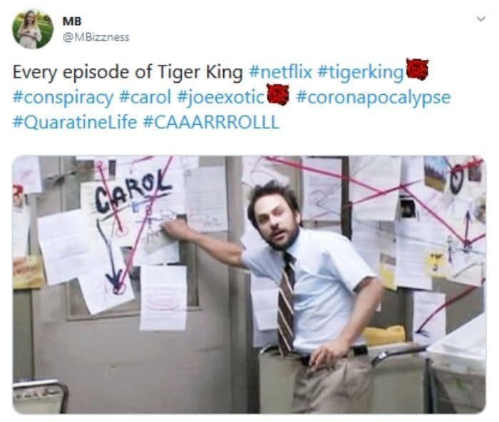 The BEST Netflix's Tiger King Memes