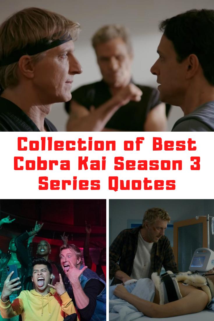 Cobra Kai Season 3 Quotes