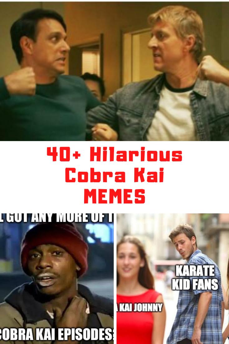 Cobra Kai Memes
