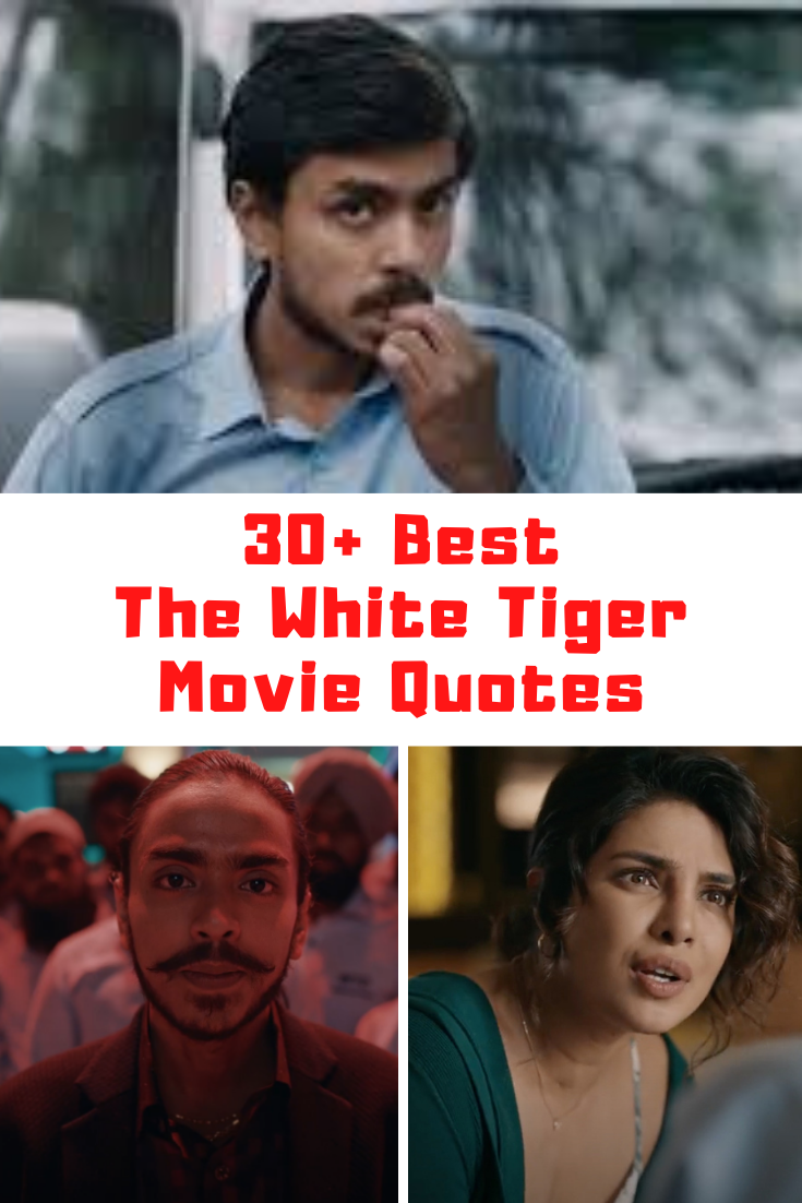 THE WHITE TIGER Movie Quotes