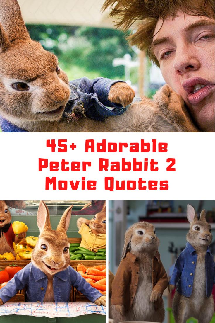 Peter Rabbit 2: The Runaway Quotes